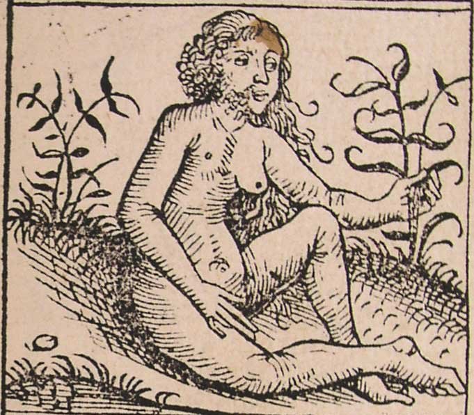 бестиарий нюрнбергская хроника средневековые монстры средневековые миниатюры отвратительные мужики